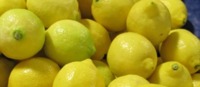 Research to find alternatives for the biological control of lemon diseases