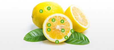 Lemon: a fruit full of possibilities